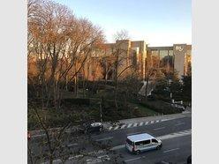 Bureau à louer 12 Chambres à Luxembourg-Belair - Réf. 6659419