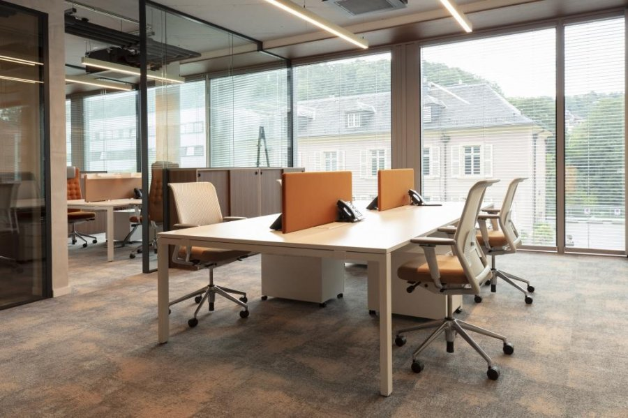 office for buy 0 bedroom 620 m² luxembourg photo 3