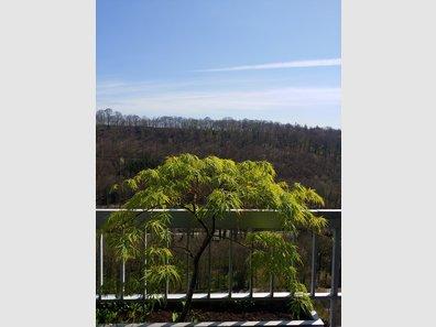 Apartment for rent 3 bedrooms in Luxembourg-Dommeldange - Ref. 7182443