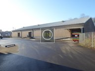Warehouse for rent in Luxembourg-Hollerich - Ref. 6665339