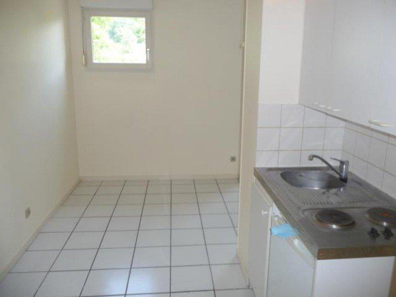 louer appartement 1 pièce 38 m² nancy photo 6