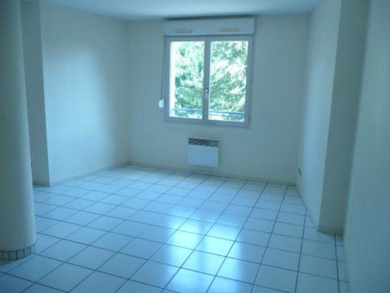 louer appartement 1 pièce 38 m² nancy photo 1