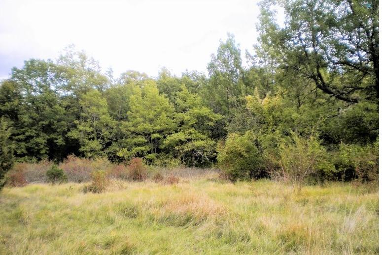 acheter terrain constructible 0 pièce 0 m² angevillers photo 1