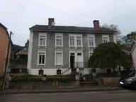 Immeuble de rapport à vendre F10 à Moyenmoutier - Réf. 6602907