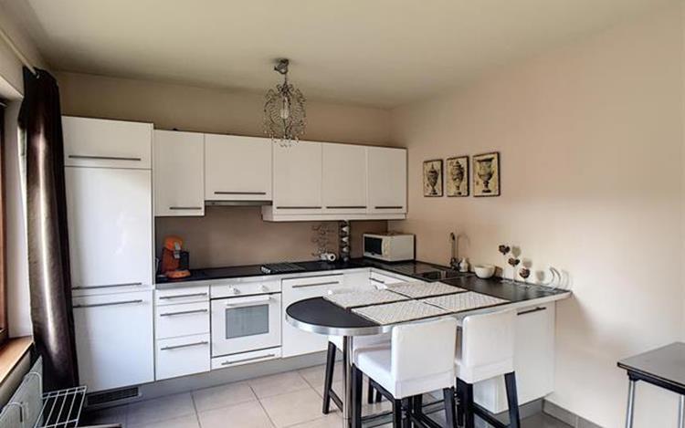 louer appartement 0 pièce 50 m² huy photo 5