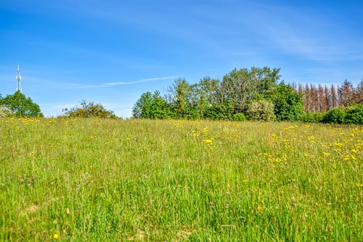 acheter terrain constructible 0 pièce 417 m² messancy photo 2