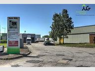 Entrepôt à louer à Ennery - Réf. 6286491