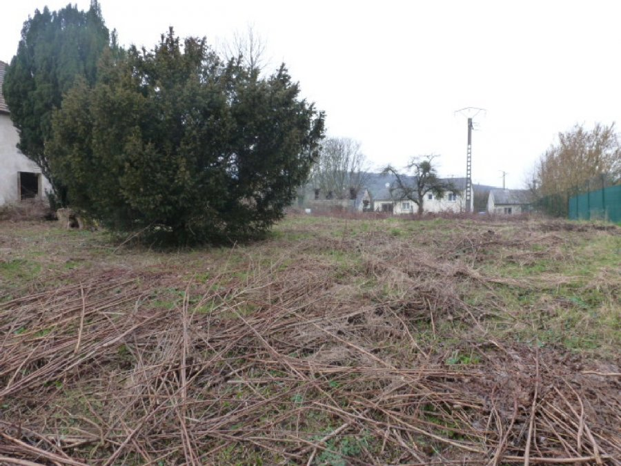 acheter terrain constructible 0 pièce 0 m² leyr photo 1