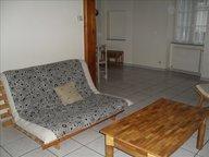 Appartement à louer F2 à Sarrebourg - Réf. 6984635