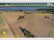 Gewerbliches Grundstück zur Miete in Goldberg - Ref. 5072315