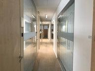 Bureau à louer à Luxembourg-Centre ville - Réf. 6219195