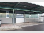 Warehouse for rent in Trier - Ref. 6151099