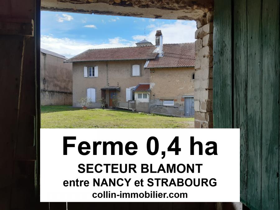 acheter maison 1 pièce 1 m² blâmont photo 1