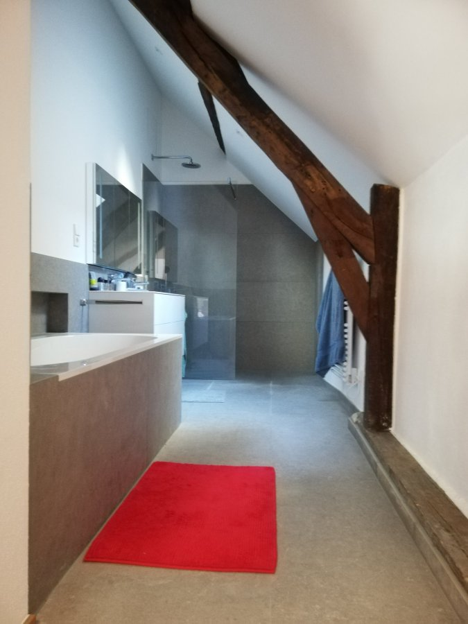 wohnung mieten 1 schlafzimmer 93.11 m² luxembourg foto 4