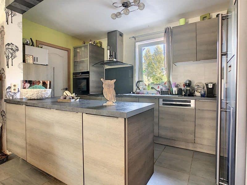 acheter maison 0 pièce 134 m² frasnes-lez-anvaing photo 7
