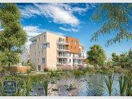 Appartement à louer F2 à Strasbourg - Réf. 6257099