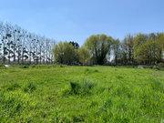 Terrain constructible à vendre à Sainte-Gemmes-d'Andigné - Réf. 6316251