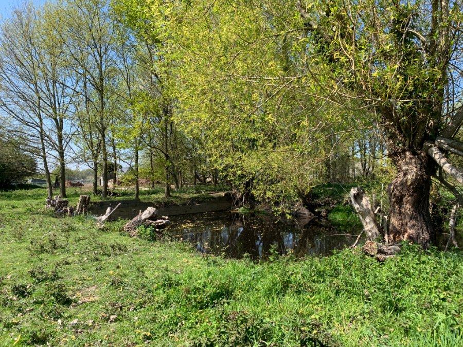 acheter terrain constructible 0 pièce 15000 m² sainte-gemmes-d'andigné photo 2