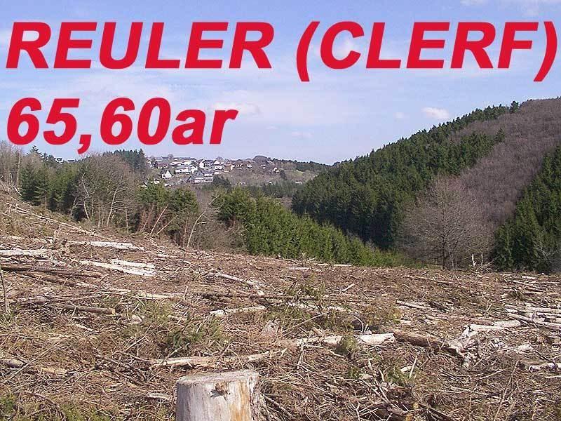 non building land for buy 0 bedroom 0 m² reuler photo 1