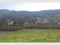 Terrain constructible à vendre à Saint-Dié-des-Vosges - Réf. 5720795