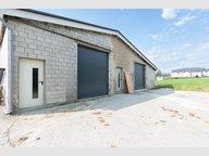 Entrepôt à louer à Wincrange - Réf. 6650587