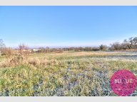Terrain constructible à vendre à Herbeuville - Réf. 7083755