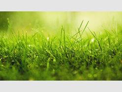 Terrain constructible à vendre à Thionville - Réf. 6557675