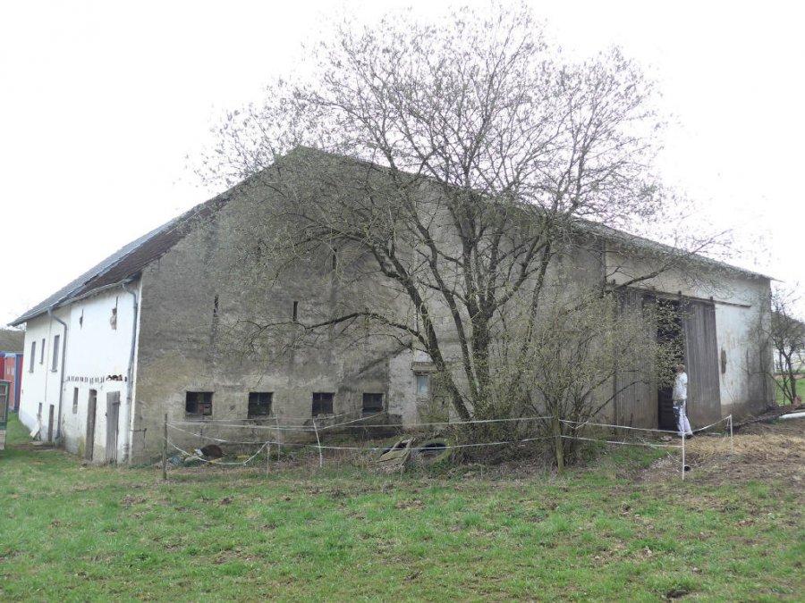 hof kaufen 5 zimmer 140 m² bitburg foto 3