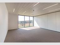 Büro zur Miete in Wemperhardt - Ref. 6770171