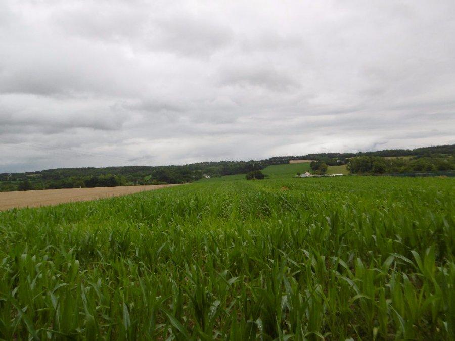 Terrain constructible à vendre à Saint dolay