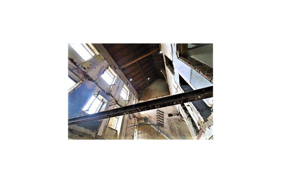 renditeobjekt kaufen 0 zimmer 0 m² bouzonville foto 2