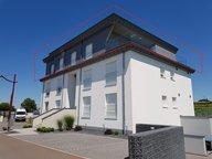 Penthouse-Wohnung zum Kauf 2 Zimmer in Weiswampach - Ref. 6154508