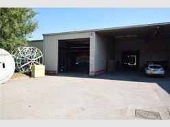Warehouse for rent in Bertrange - Ref. 6367756