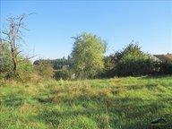 Terrain constructible à vendre à Bruyères - Réf. 7081484
