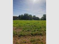 Terrain constructible à vendre à Pournoy-la-Chétive - Réf. 6467084