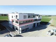 Bureau à vendre à Weiswampach - Réf. 7122700