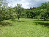 Terrain constructible à vendre à Nayemont-les-Fosses - Réf. 5947148