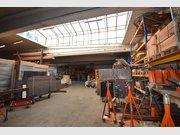 Warehouse for rent in Bertrange - Ref. 6517020