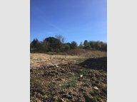 Terrain constructible à vendre à Châtel-Saint-Germain - Réf. 6320668
