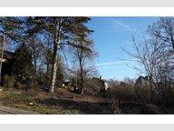 Terrain constructible à vendre à Steinsel - Réf. 6207004