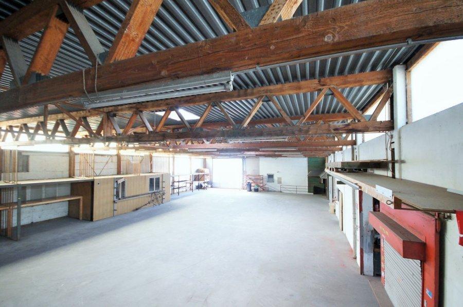 lagerfläche kaufen 0 zimmer 1100 m² mülheim foto 5