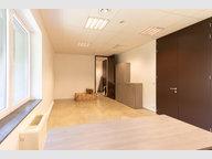 Office for rent in Heinerscheid - Ref. 6802204
