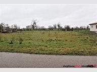 Terrain constructible à vendre à Brainville - Réf. 6995740