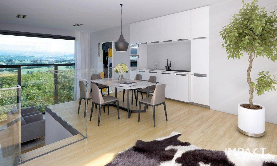 house for buy 4 bedrooms 171.95 m² dudelange photo 1