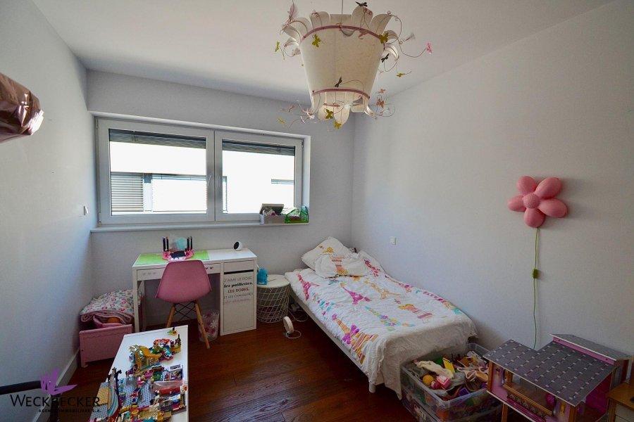acheter maison 5 chambres 280 m² luxembourg photo 7