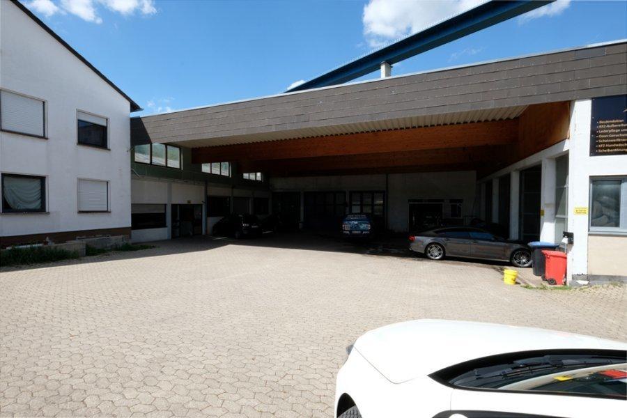lagerfläche kaufen 0 zimmer 3300 m² zeltingen-rachtig foto 2