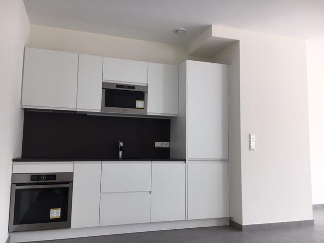 louer duplex 2 chambres 83 m² esch-sur-alzette photo 3