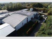 Entrepôt à vendre à Beckingen - Réf. 6550348