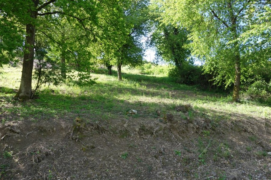 acheter terrain constructible 0 pièce 0 m² waldrach photo 2