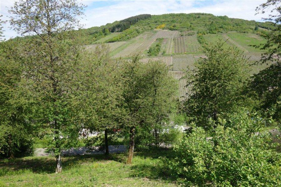 acheter terrain constructible 0 pièce 0 m² waldrach photo 6